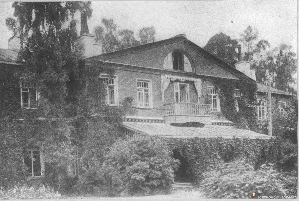 Приютино 1913 год