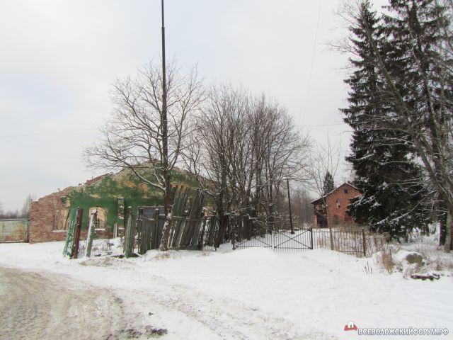 Зима 2012 г.