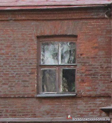окно господского дома