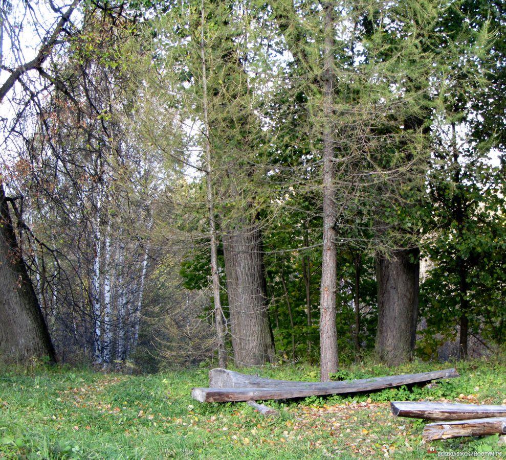лесные скамейки