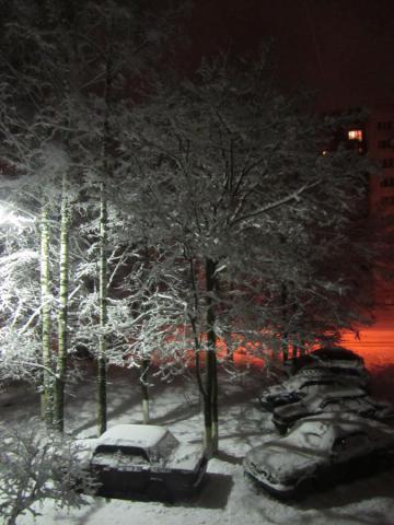 зима-красавица (2).JPG