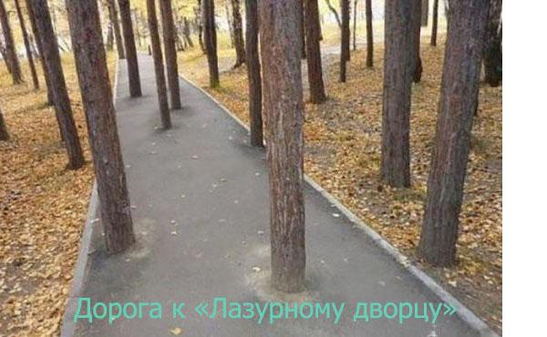 дорога к дворцу.jpg