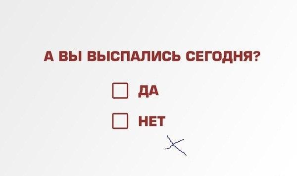 XTCdqmgA6hk.jpg